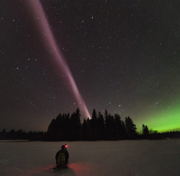 Alberta Aurora Chasers capture STEVE, the new-to-science upper atmospheric phenomenon, on the evening of April 10, 2018 in Prince George, British Columbia, Canada. Fellow Aurora Chaser Robert Downie kneels in the foreground while photographer Ryan Sault captures the narrow ribbon of white-purple hues overhead. The vibrant green aurora is seen in the distant north, located to the right in the photo. In this issue, Gallardo-Lacourt et al. use a ground based all-sky imager and in situ satellite data to study the origin of STEVE. Their results demonstrate that STEVE is different than aurora since the observation is characterized by the absence of particle precipitation. Credit: Ryan Sault.