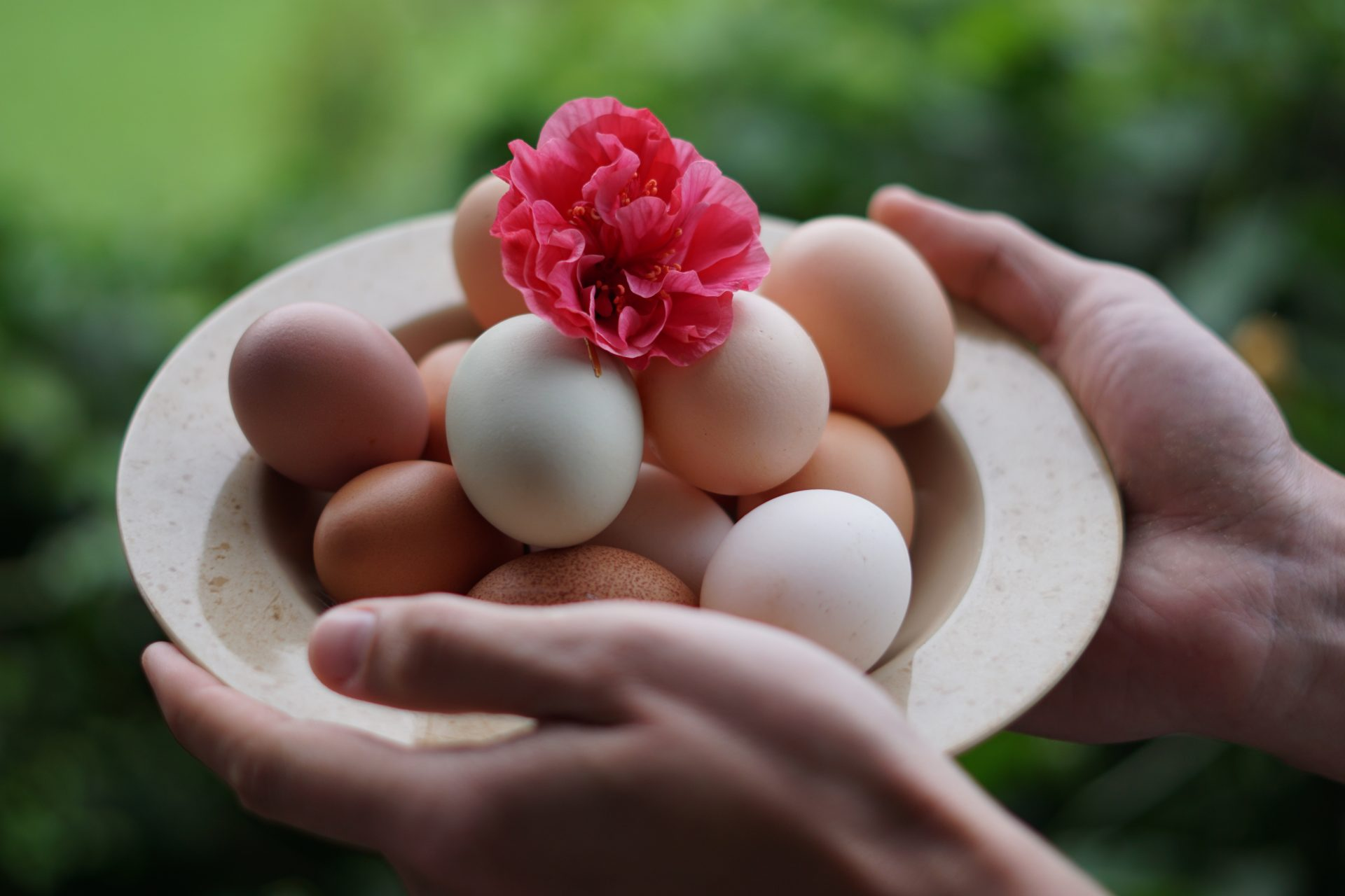 """Eggs produce a """"ying"""" effect which nourishes the blood and strengthens the brain. (Image Credit: Unsplash / CC0 1.0)"""