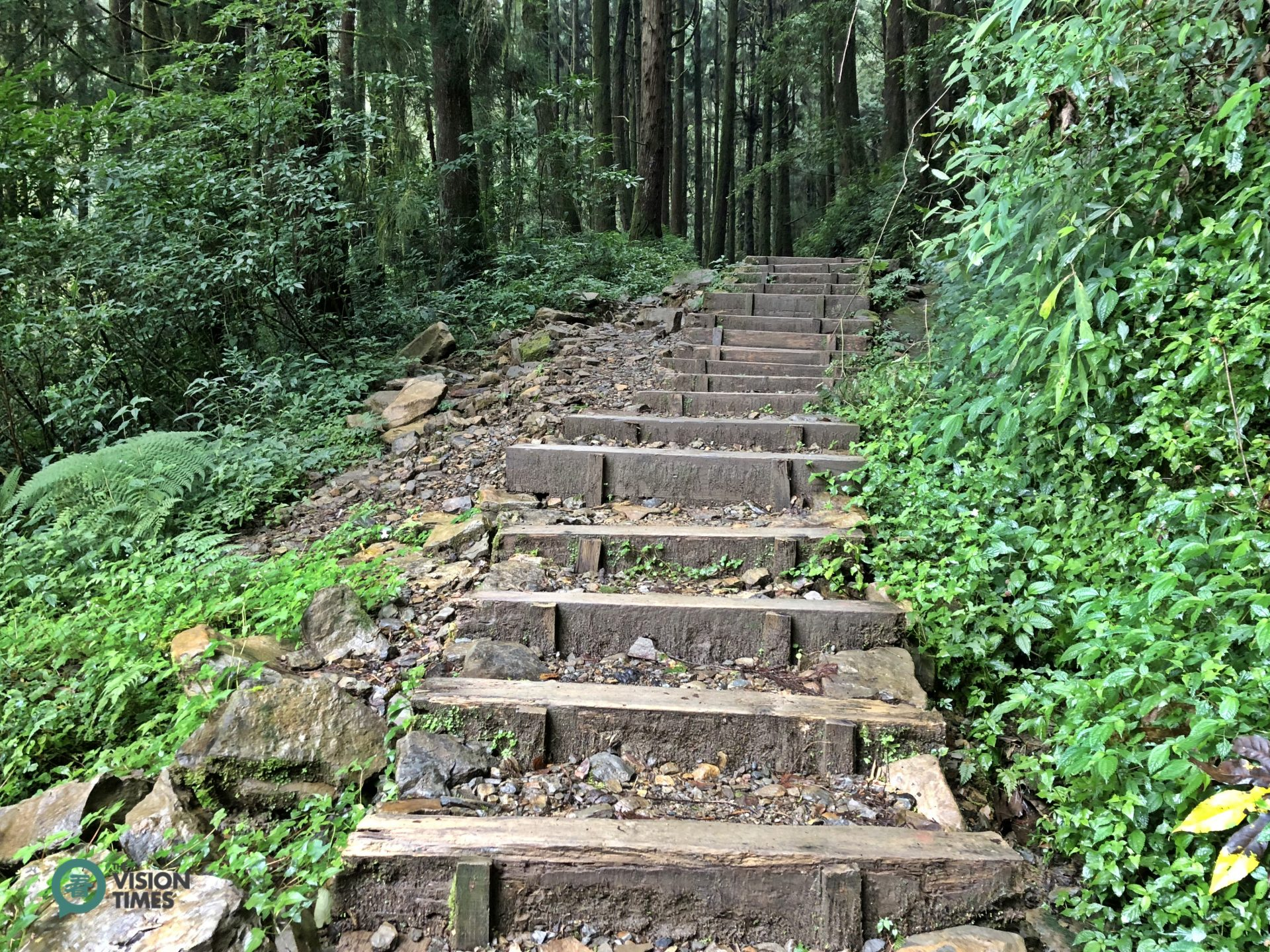 There are many steps on wooden ties along Tefuye Old Trail. (Image: Billy Shyu / Vision Times)