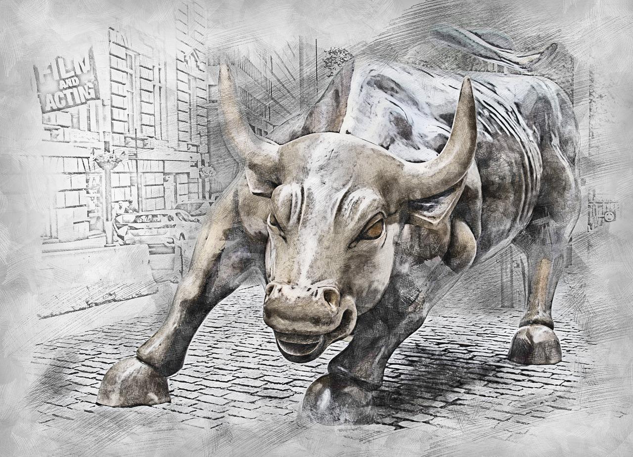bull-3112617_1280