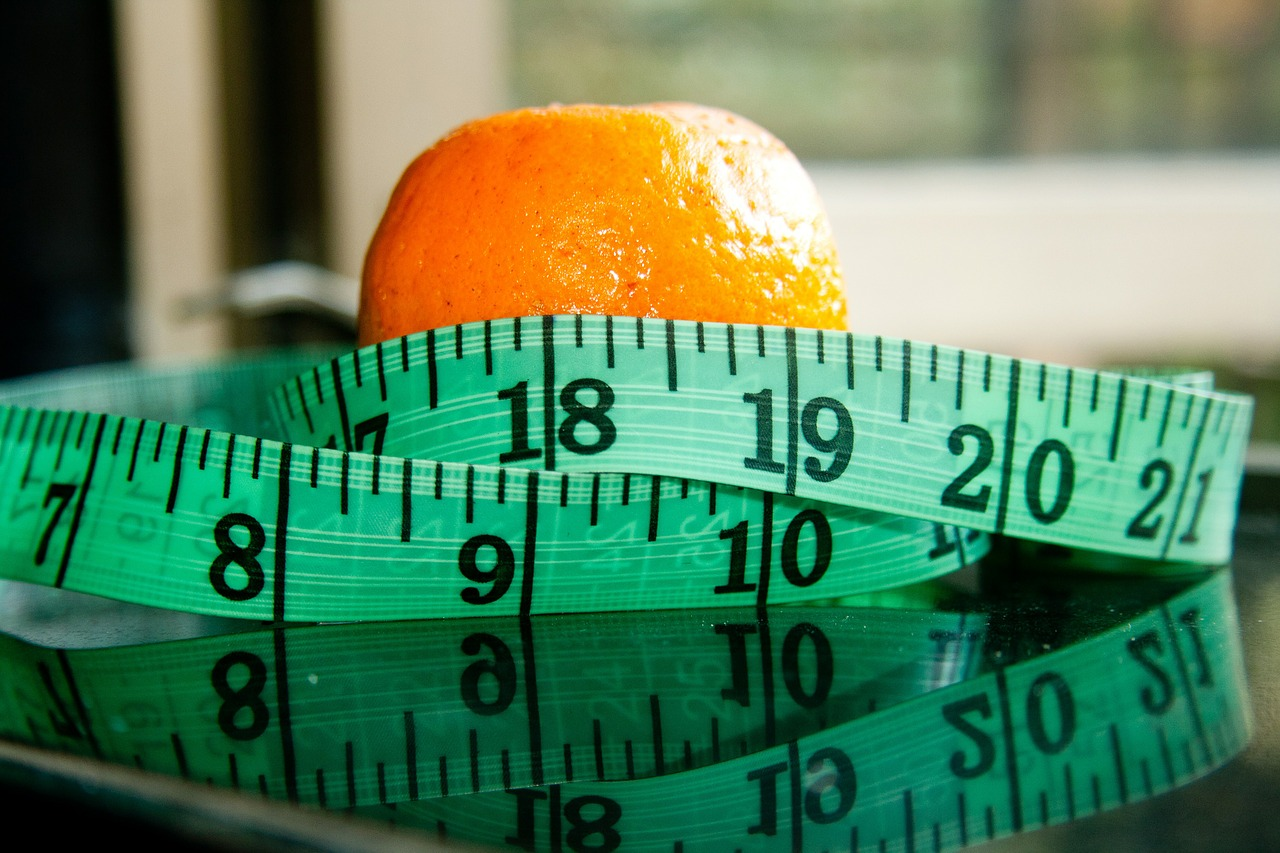 A report released by the Centers for Disease Control and Prevention showed that around 20 percent of adolescents and 40 percent of adults in the U.S. were obese. (Image via pixabay / CC0 1.0)