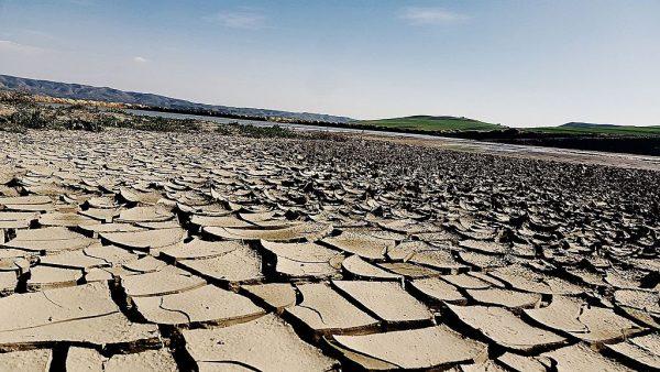 Drought_land_dry_mud_BOUHANIFIA_Algeria_01