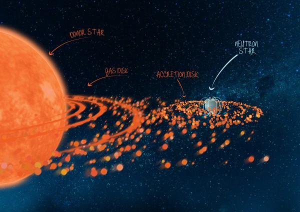 An artist's impression of the binary system Swift J0243.6+6124. A binary system with a neutron star in a 27-day orbit and a more massive, rapidly-rotating donor star. The rapid rotation of the donor star throws off a disk of material around the stellar equator. As the neutron star passes through the disk during its orbit, it picks up some of this outflowing gas, which then spirals in towards the neutron star in an accretion disk. (Credit: ICRAR/University of Amsterdam)