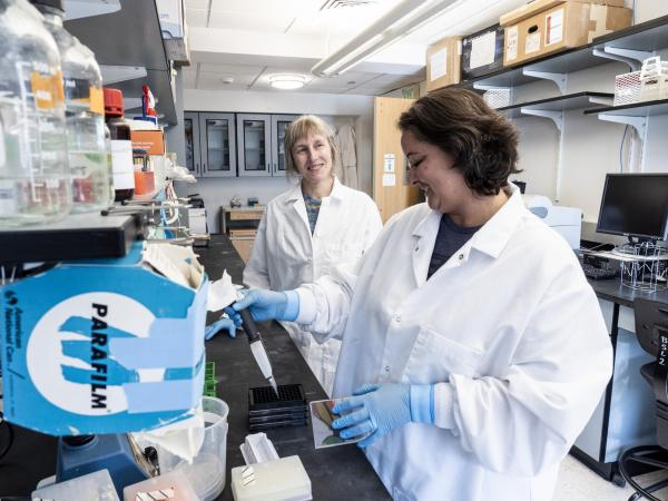 Senior research assistant Amy Crooks, right, works with Corrie Detweiler in the lab. (Image: University of Colorado Boulder)