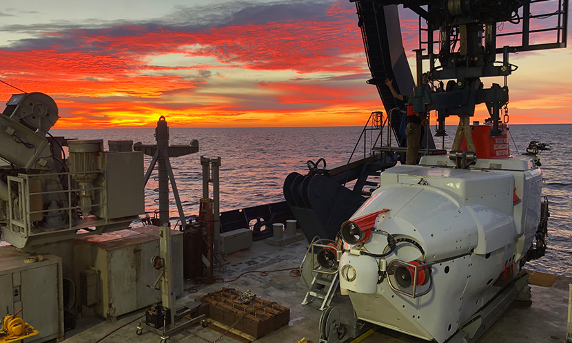 The Alvin deep-sea submersible awaits another collection run in the Guaymas Basin in November 2018. (Image: Brett Baker)