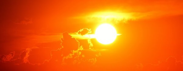 In hot summer days, the body sweats a lot to assist with heat dissipation. (Image: pixabay / CC0 1.0)
