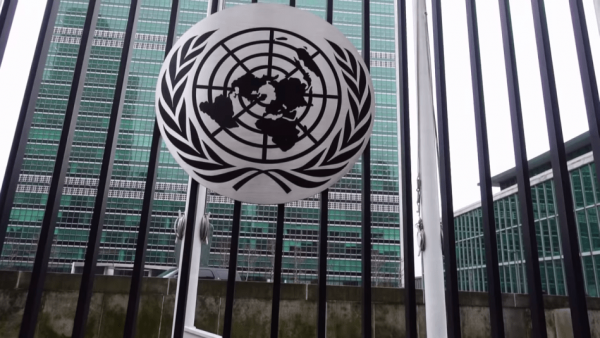 A day in the life of a United Nations intern (NYC Headquarters) 1-48 screenshot
