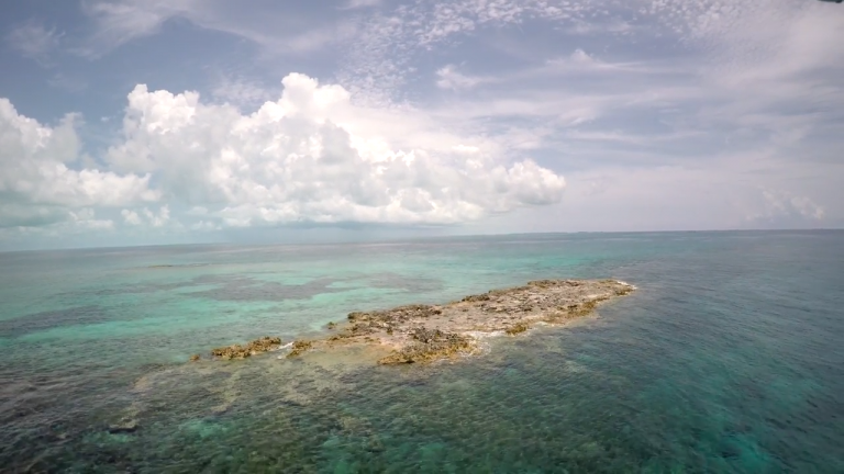In 1938, Edgar Cayce predicted that remnants of Atlantis would be discovered near Bimini in the Bahamas.