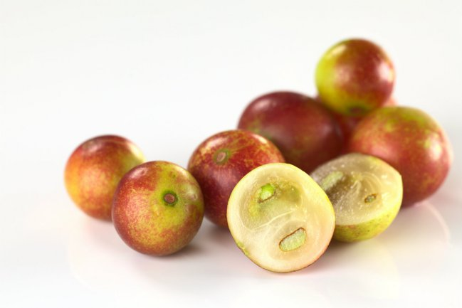 In Pucallpa the juice made from the Camu Camu fruit is among the most popular fresh fruit drinks. (Image Credit: Agroforum Perú [CC BY-SA 4.0], via Wikimedia Commons)