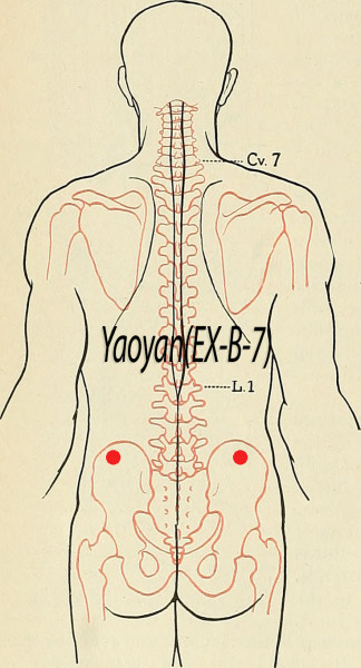 Yaoyan EX-B-7, Acupuncture Point (Image Credit: Flickr, Public Domain /Hermann Rohr/Vision Times)