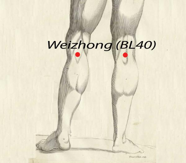 Weizhong BL40, Acupuncture Point (Image Credit: Amé Bourdon (del.), Daniel Le Bossu (sculps.) / Scan by NLM [Public domain], via Wikimedia Commons, Hermann Rohr/ Vision Times)