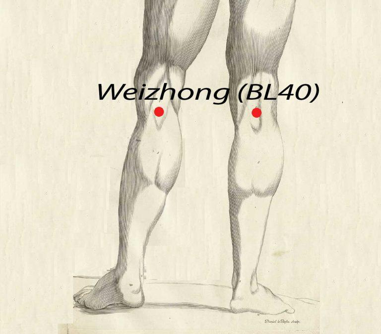 Weizhong BL40, Acupuncture Point (Image Credit: Amé Bourdon (del.), Daniel Le Bossu (sculps.) / Scan by NLM [Public domain], via Wikimedia Commons, Hermann Rohr/ Nspirement)