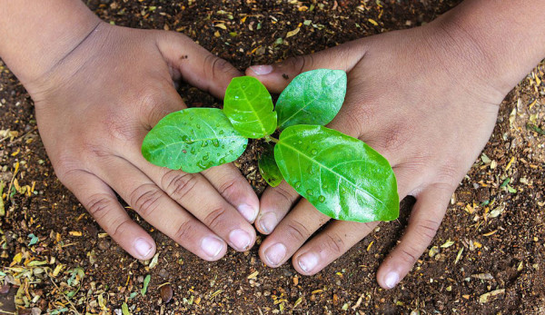 Indian_Man_Who_Planted_5_Million_Trees_Is_Now_No_More1