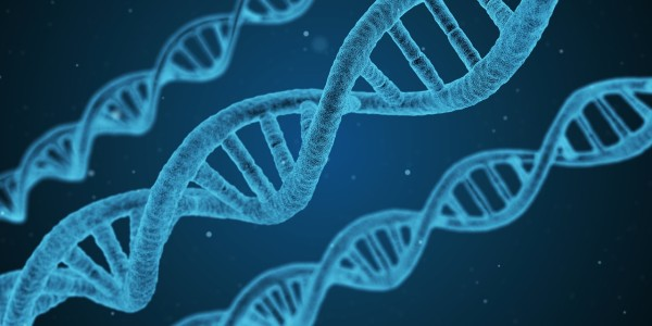 circulating DNA that cancer and other cells shed into the blood – have a shorter progression-free survival than patients with less cfDNA, and that cfDNA spikes in patients either at the time of or just before their disease progresses. (Image: pixabay / CC0 1.0)