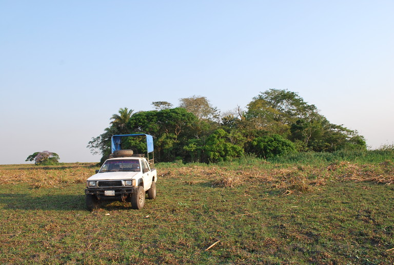 The archaeological team conducted its study on three forest islands — Isla del Tesoro, La Chacra and San Pablo — within the seasonally flooded savanna of the Llanos de Moxos in northern Bolivia. (Image: Jose Capriles)