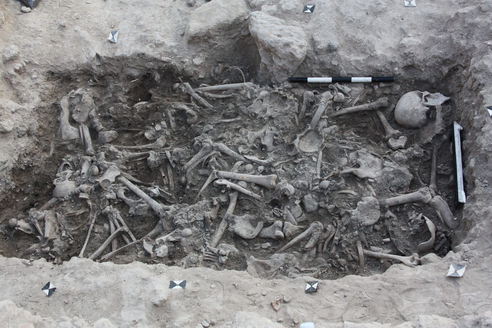 This image shows the bones of the Crusaders found in a burial pit in Sidon, Lebanon. (Image: Claude Doumet-Serhal)