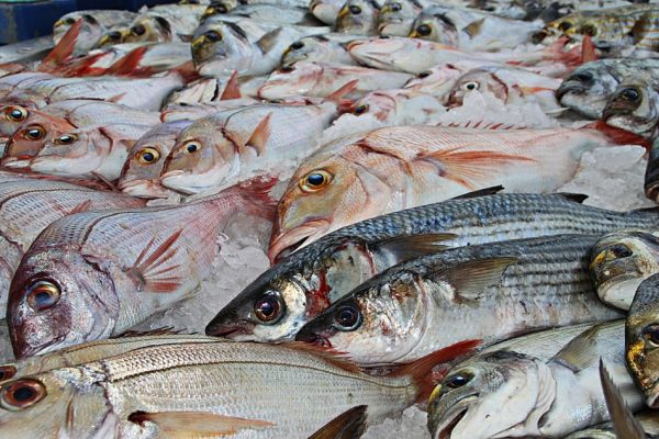 Eat more fish and less meat for health. (Image: via pixabay / CC0 1.0)