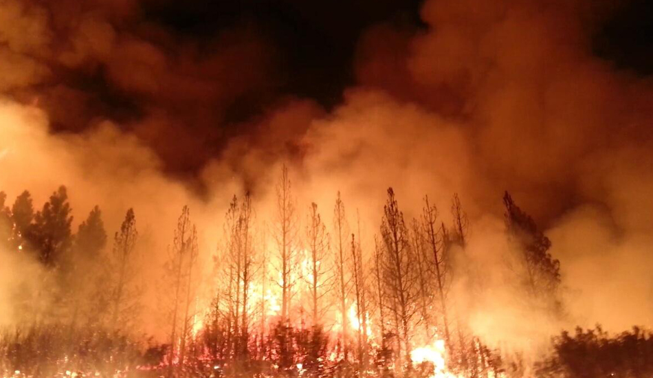 California saw one of the worst wildfires in 2018. (Image: wikimedia / CC0 1.0)