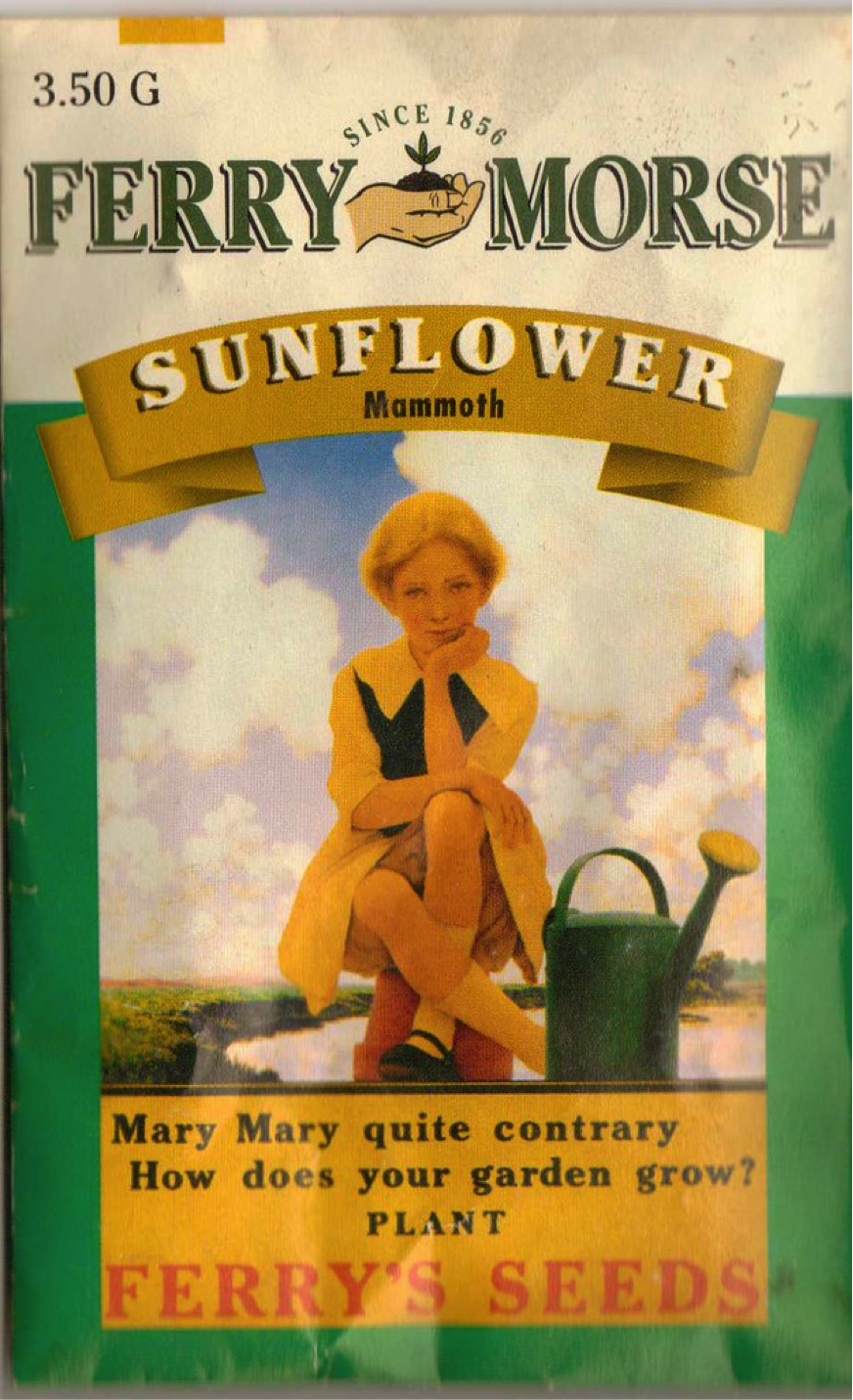 "Maxfield Parrish's popular ""Mary, Mary, Quite Contrary"" illustration featured on Ferry's Seeds bags. (Image: Public Domain)"