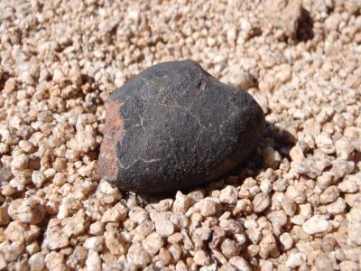 Meteorite with thin, dark, fusion crust in the Atacama Desert. (Image: Jérôme Gattacceca (CEREGE))