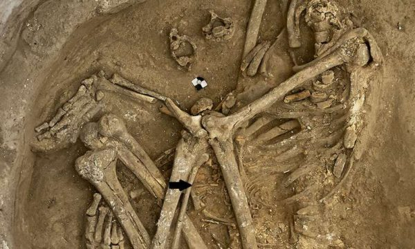 Neolithic burial from Çatalhöyük, Turkey, is represented by a headless young adult female with a fetal skeleton (arrow). Skull removal was a burial custom practiced in number of instances at this locality. (Image: the Çatalhöyük Research Project/Jason Quinlan)