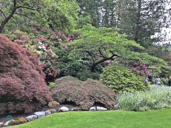 The Butchart Gardens is one of the absolute must visit places on Vancouver Island. (Image: Billy Shyu / Vision Times)