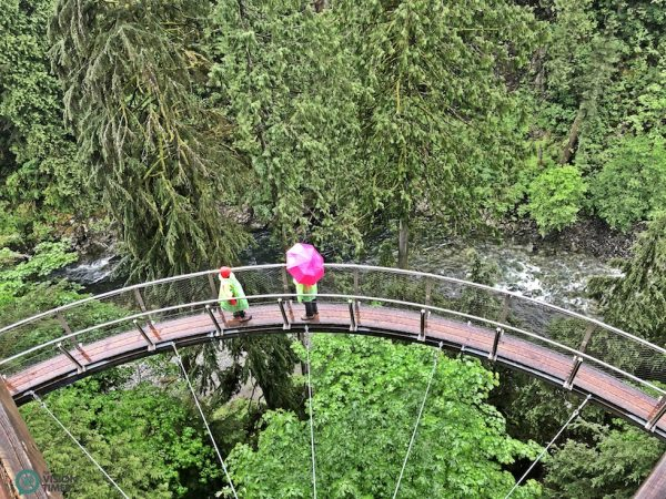 The U-shaped session of the breathtaking Cliffwalk in the Capilano Suspension Bridge Park. (Image: Billy Shyu / Vision Times)