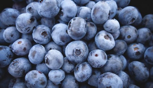 blueberries-690072_1280-950x550