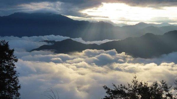 (Image: Jiahong Su)