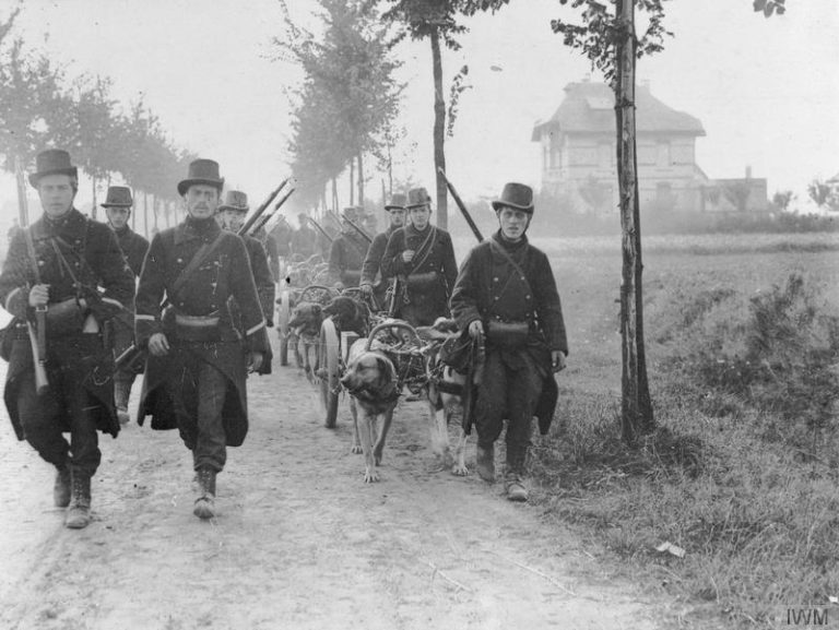 Belgian troops, with machine-guns pulled by dogs, photographed during the Battle of the Frontiers. (Image: wikimedia / CC0 1.0)