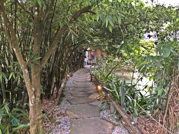 Visitors have to walk through a leafy stretch before getting to the entrance of the restaurant. (Image: Billy Shyu / Vision Times)