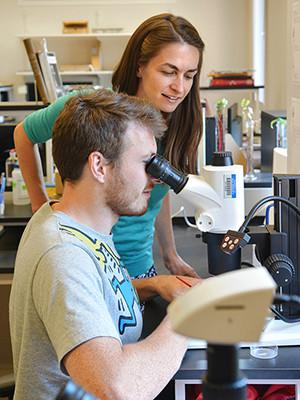 Pincelli Hull, assistant professor of geology and geophysics, standing next to researcher Michael Henehan, who is looking into a microscope. (Image: Yale News)