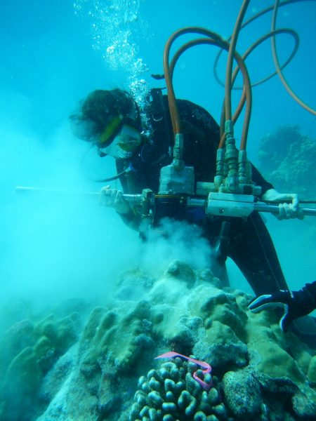 In scuba gear, Georgia Tech professor Kim Cobb drills into corals in the tropical Pacific with a pneumatic coring drill to take samples for studies on recent and historic sea surface temperatures. (Image: Georgia Tech / Cobb lab)