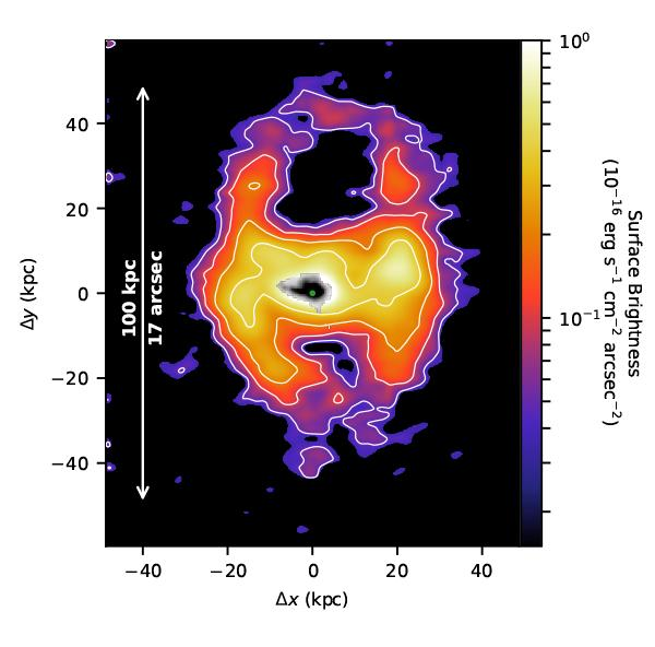 Figure 1: The giant galactic wind surrounding the massive, compact galaxy Makani. The colors and white contour lines show the amount of light emitted by the ionized gas from different parts of the oxygen nebula, from brightest (white) to faintest (purple). The middle part of the image (black) shows the full extent of the galaxy, though most of the galaxy is concentrated at the center (the tiny green circle). The axes show distance from the center of the galaxy in kiloparsecs. (Image: Gene Leung, UC San Diego)