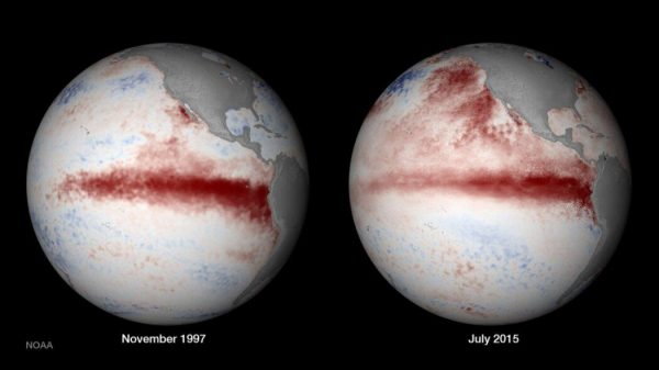 On the right, satellite composition of El Nino in 1997, and on the left, El Nino in 2015. Both were extreme El Nino events that new hard evidence says are part of a new and odd climate pattern. (Image: NOAA)