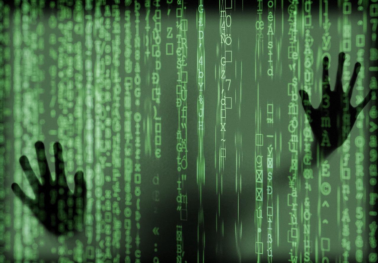 code, data