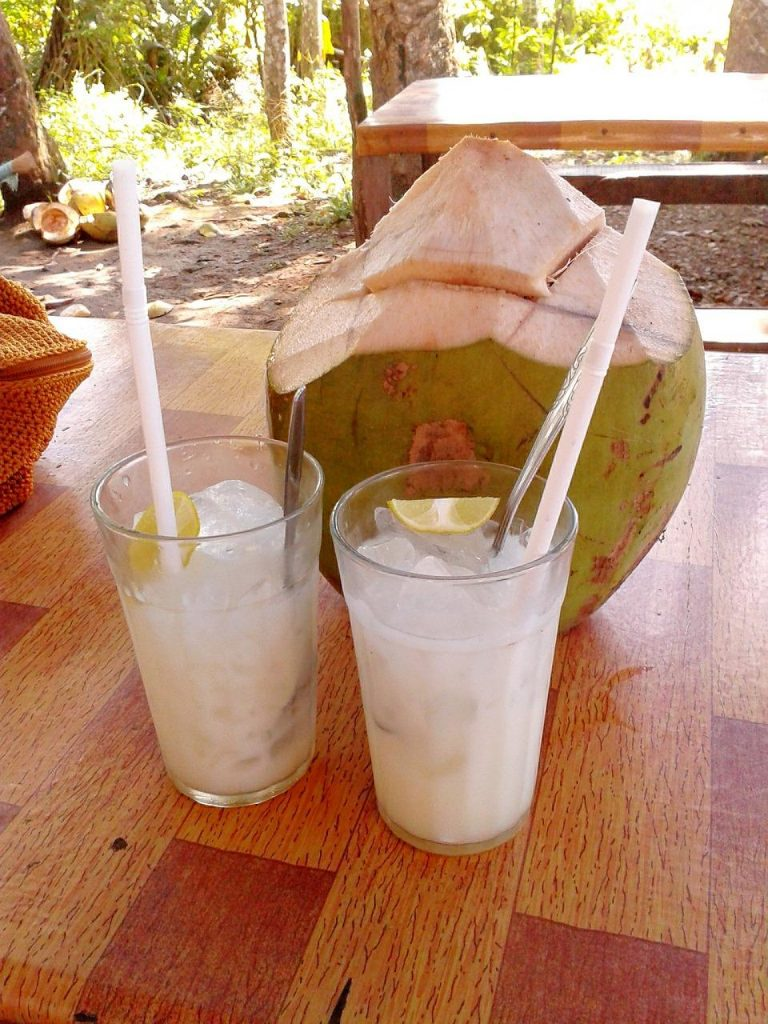 Coconut milk can be bought in tins that you can dilute, or as packaged pouring milk that's made from shredded coconut. (Image: maxpixels / CC0 1.0)