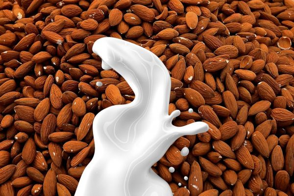 Almond milk is one of the more nutritious kinds of milk, especially if you make it yourself. (Image: maxpixels / CC0 1.0)