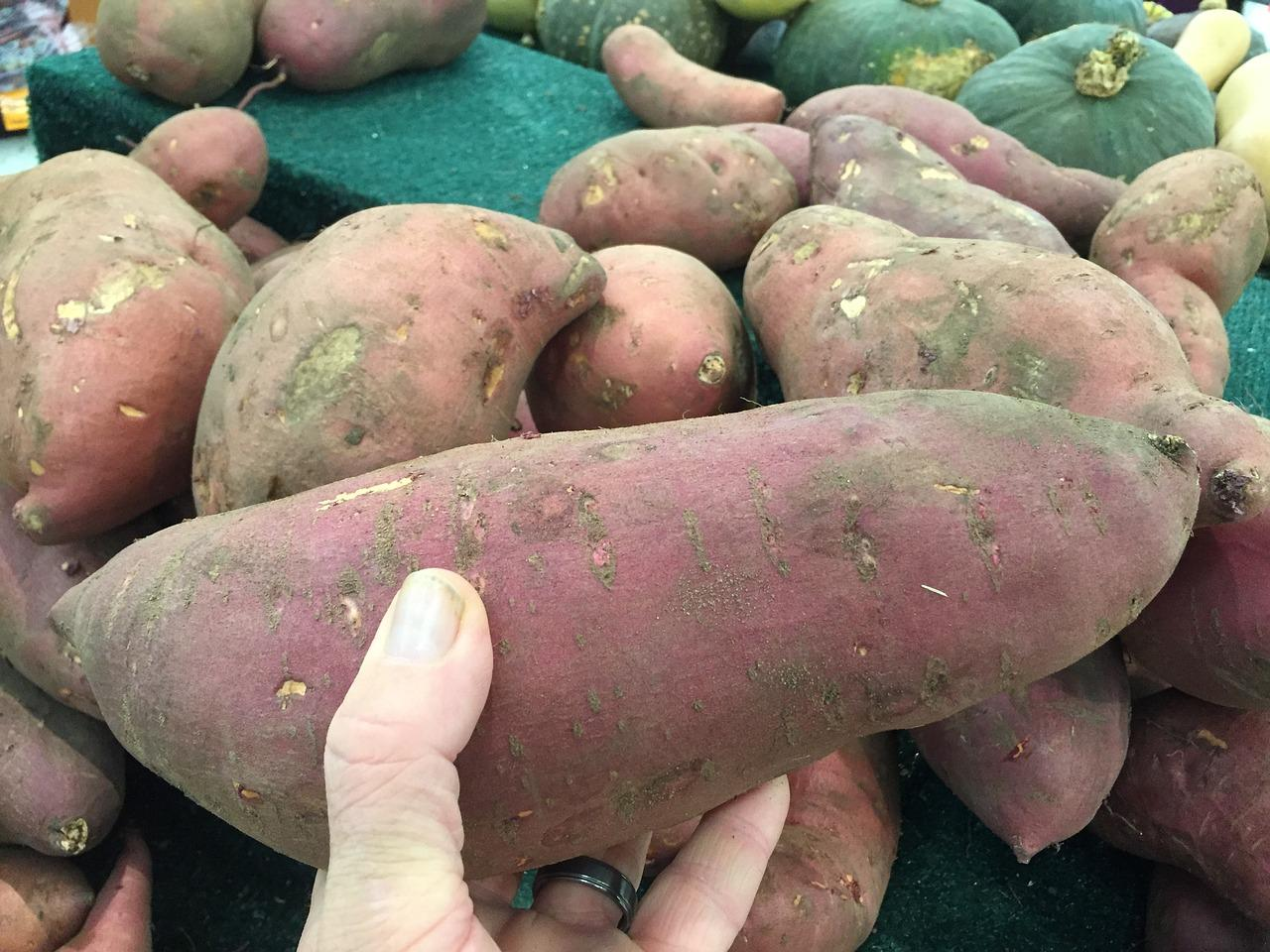 Okinawans love their sweet potatoes. (Image: maxpixel / CC0 1.0)