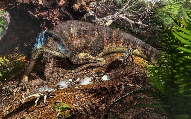 Artist's depiction of an ornithopod dinosaur tending its nest. (Image: James Kuether)