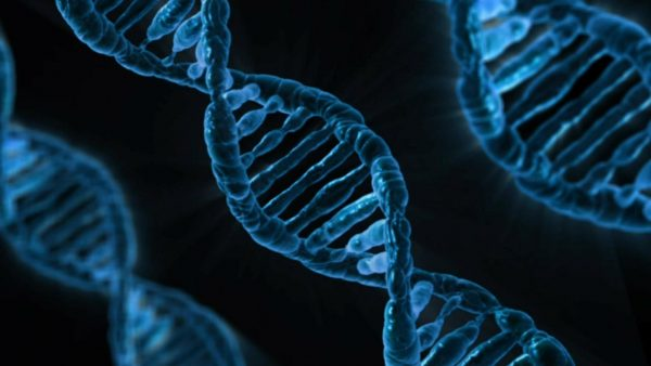 A new technology known as next-generation sequencing came into use around 2010 and allowed researchers to study a very large number of genetic sequences in the human genome. (Image: via pixabay / CC0 1.0)