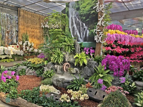 A corner at the Orchid Hall of Hualu Flower Home Leisure Farm. (Image: Billy Shyu / Vision Times)