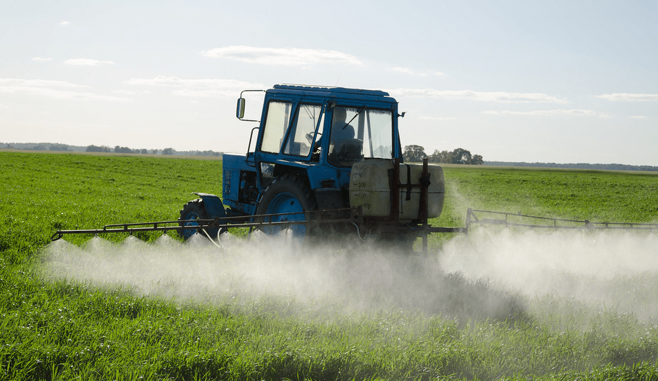 No pesticide or chemical fertilizer has been used since 1978. (Image: Aqua Mechanical via flickr CC BY 2.0 )