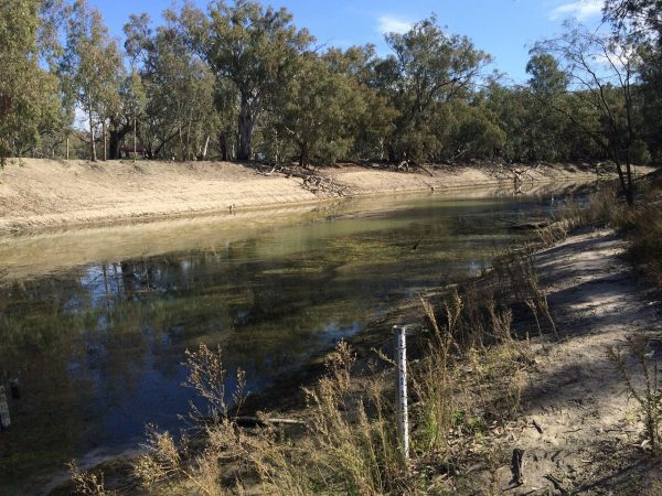 The Darling River near Pooncarie N.S.W in July 2015. It's hard to believe that the early pioneers once travelled on this river in a Paddlesteamer! Image by Trisha Haddock.