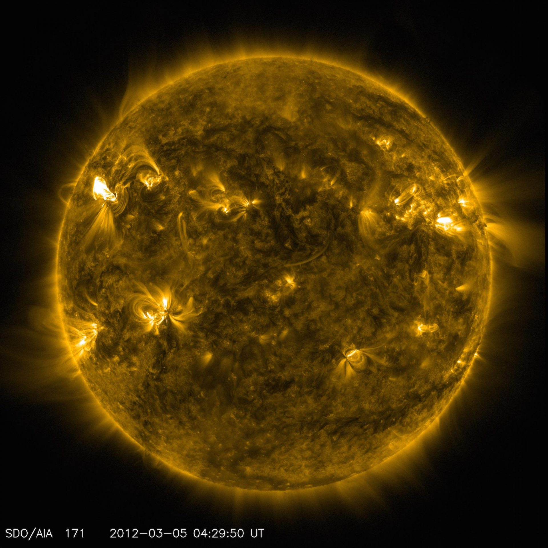 An image of active regions on the Sun from NASA's Solar Dynamics Observatory. The glowing hot gas traces out the twists and loops of the Sun's magnetic field lines. (Image: NASA/SDO/AIA)