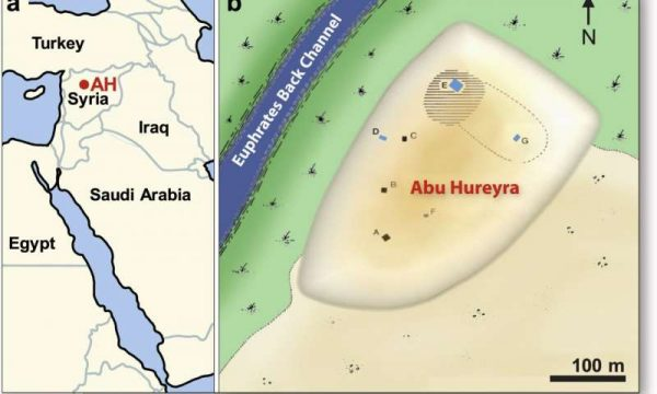 Location of Abu Hureyra (adapted from Moore et al.. (a) Map of the Middle East, showing Abu Hureyra location (AH) in Syria. (b) Map of the Abu Hureyra tell, showing locations of excavation trenches labeled A-G near a back channel of Euphrates River that is now abandoned. Sediment samples from Trenches D, E, and G (blue rectangles) contain abundance peaks in YDB proxies, including spherules, nanodiamonds, meltglass, and platinum. Credit: Scientific Reports (2020). DOI: 10.1038/s41598-020-60867-w