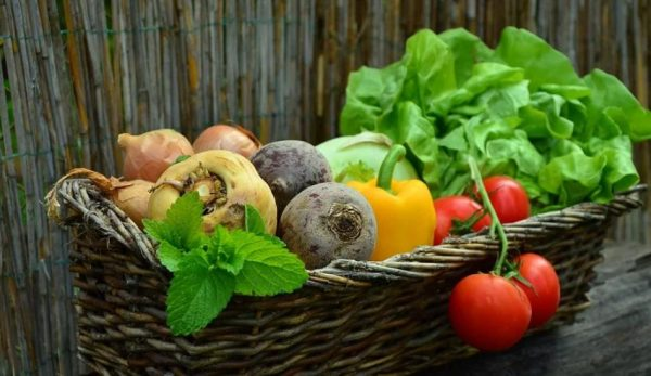 Scholars said that the secret of the Hunzas' longevity lies in their diet and lifestyle, which is based mainly on raw natural vegetables and fruit. (Image: pixabay / CC0 1.0)