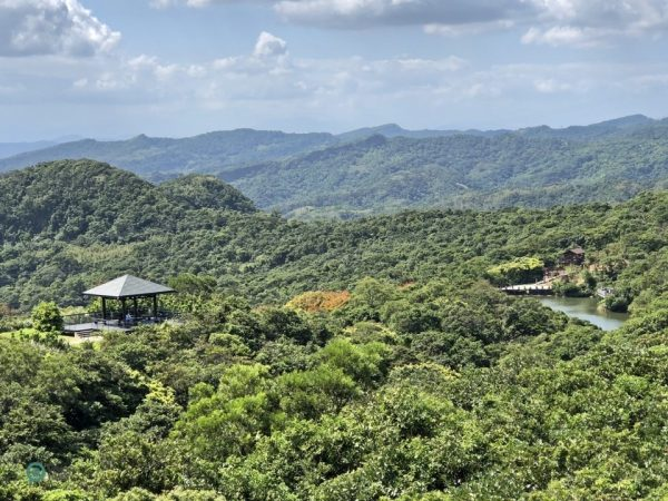 A panoramic view of the Lover's Lake Park from the top of Observation Tower. (Image: Billy Shyu / Vision Times)