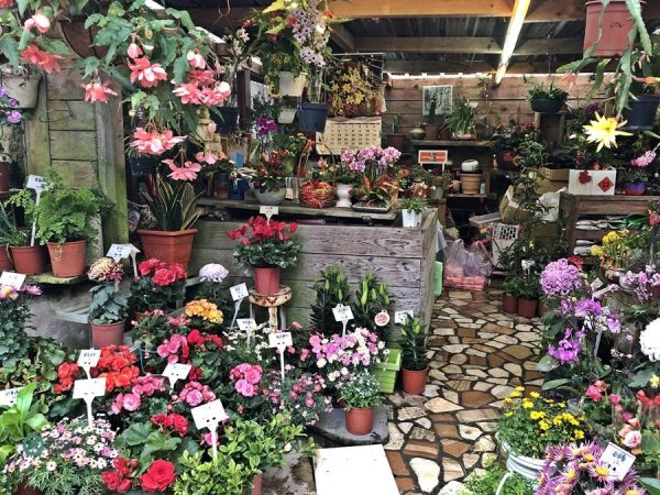 The small flower boutique is situated near the main entrance. (Image: Billy Shyu / Vision Times)