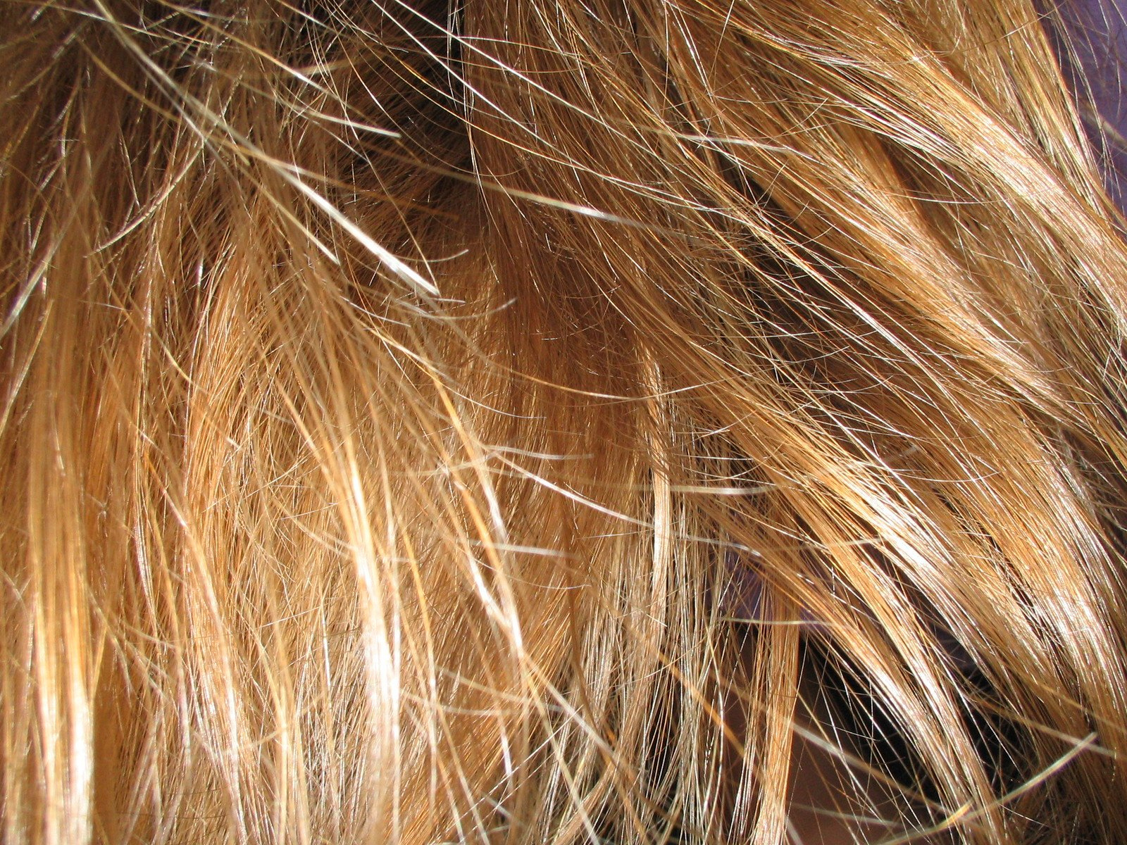 To develop a good combing habit, you need to follow certain rules. (Image: freeimages / CC0 1.0)